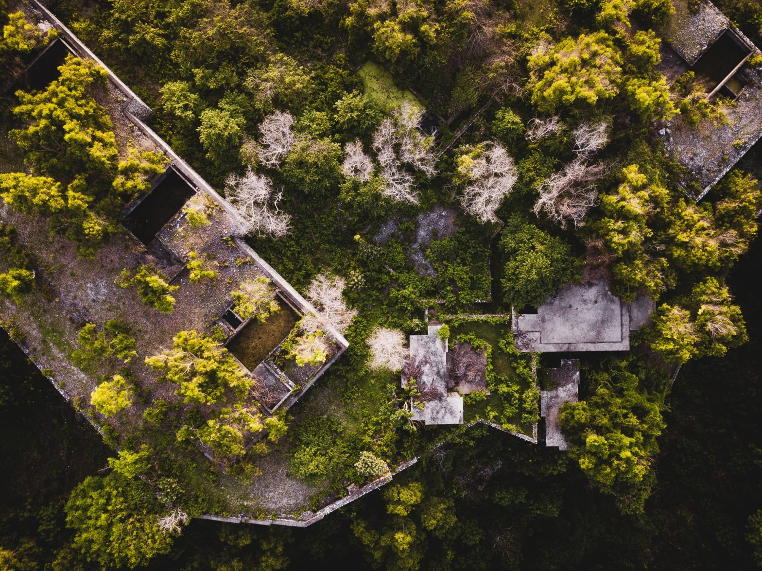 Aerial view of an unfinished tropical resort taken over by nature