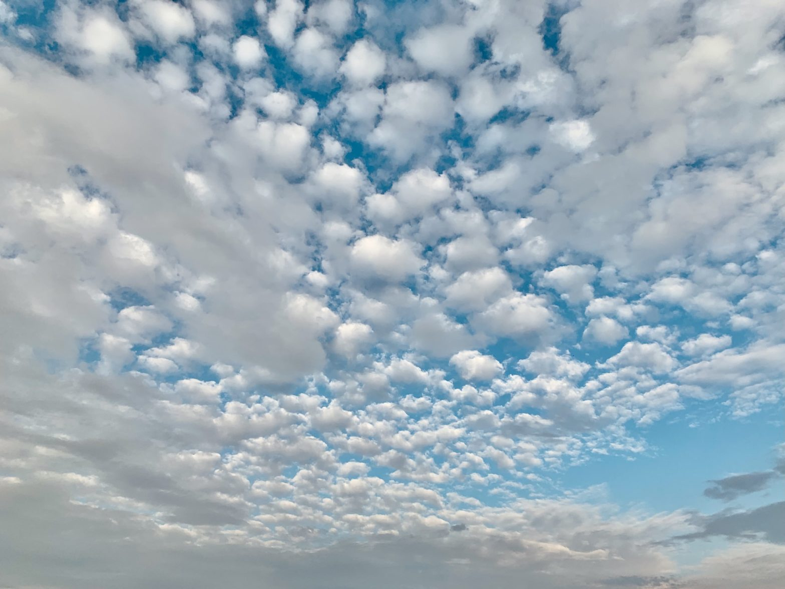 Scattered clouds in the sky